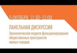 Выступление А.С. Пузанова по теме благоустройства